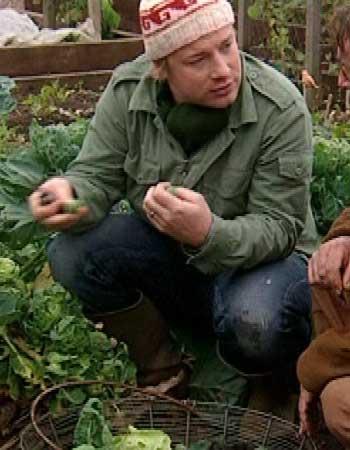 Jagged Jamie Oliver